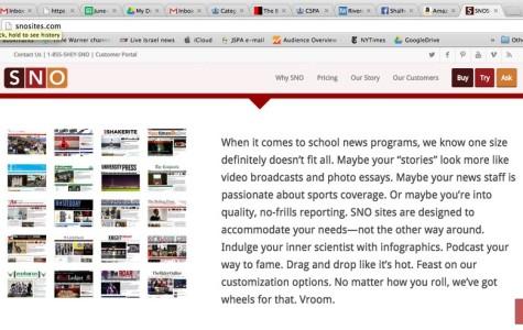 'Denial of Service' attacks briefly sideline BP website