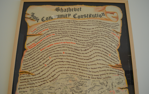Original Shalhevet Constitution: Complete Text